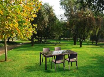Stół do ogrodu ze szklanym blatem oraz brązowe profilowane krzesła bez podłokietników