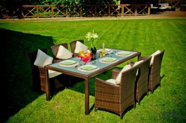 6-osobowy zestaw mebli obiadowych w dużym ogrodzie ze świeżo skoszoną trawą
