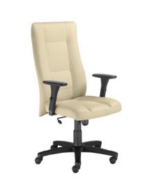 Fotel biurowy Invitus II R17J